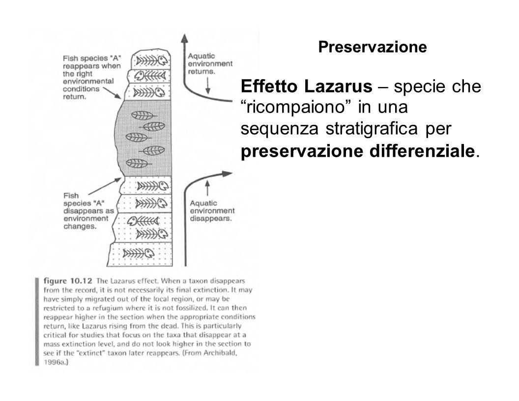 Effetto Lazarus – specie che ricompaiono in una