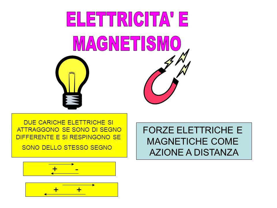 ELETTRICITA E MAGNETISMO FORZE ELETTRICHE E MAGNETICHE COME
