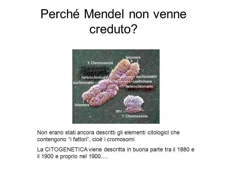 Perché Mendel non venne creduto