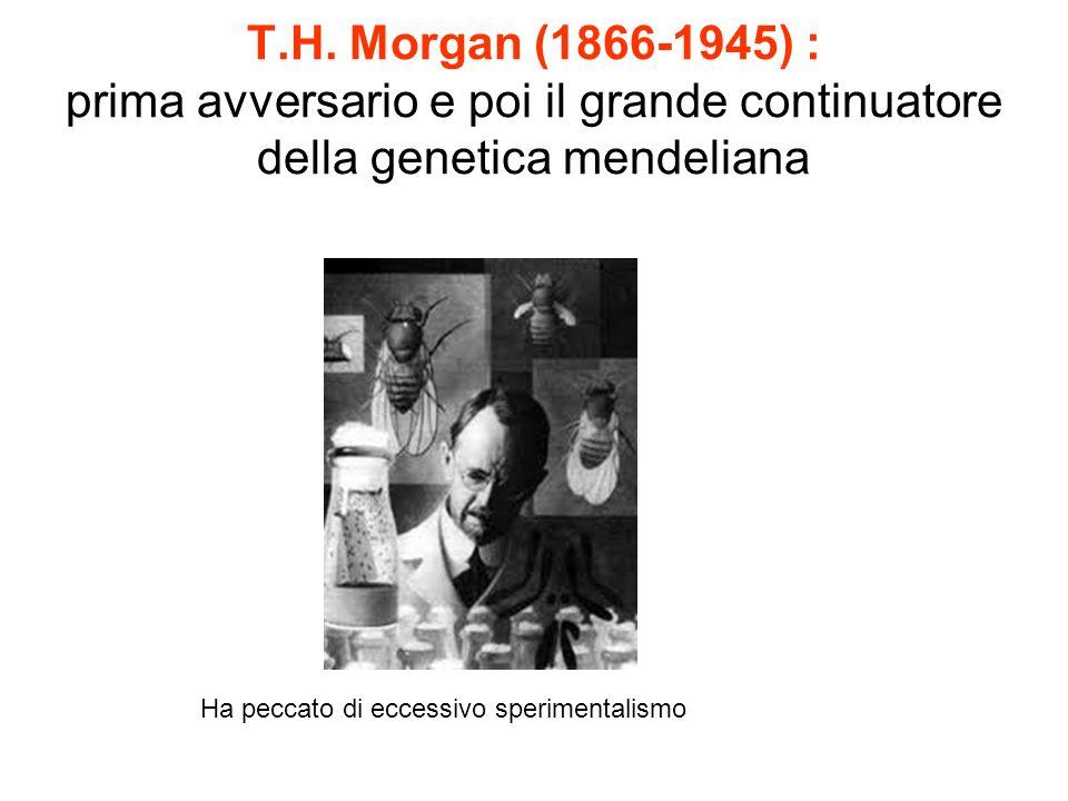 T.H. Morgan (1866-1945) : prima avversario e poi il grande continuatore della genetica mendeliana