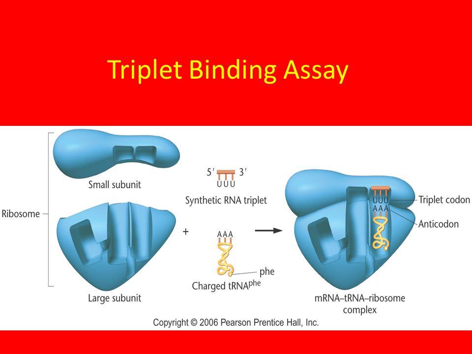 Triplet Binding Assay