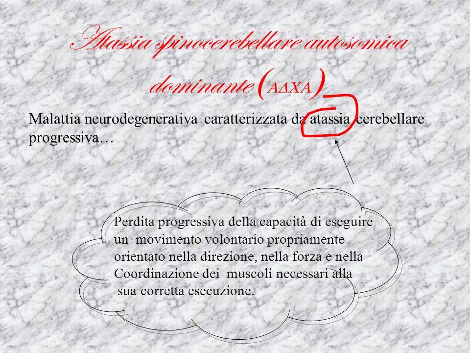 Atassia spinocerebellare autosomica dominante (ADCA)