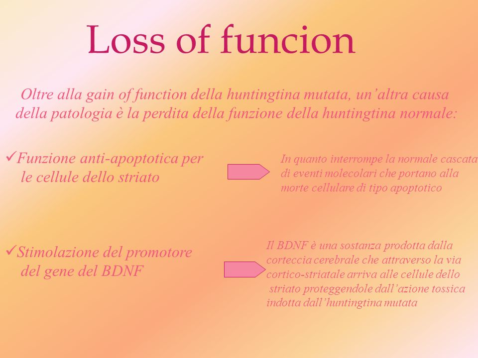 Loss of funcion Oltre alla gain of function della huntingtina mutata, un'altra causa.