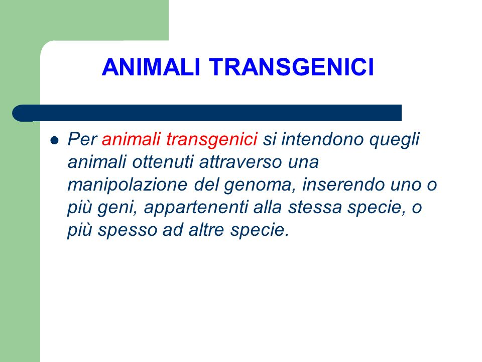 ANIMALI TRANSGENICI