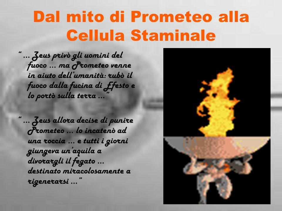 Dal mito di Prometeo alla Cellula Staminale