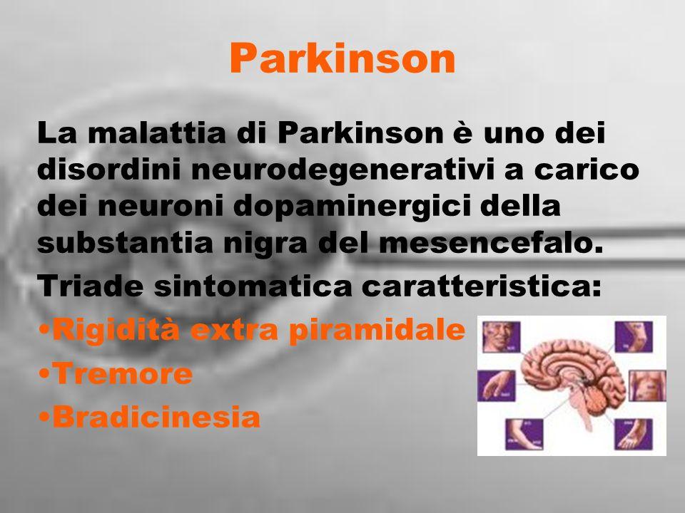 Parkinson La malattia di Parkinson è uno dei disordini neurodegenerativi a carico dei neuroni dopaminergici della substantia nigra del mesencefalo.