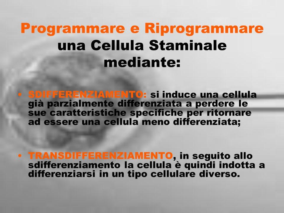 Programmare e Riprogrammare una Cellula Staminale mediante: