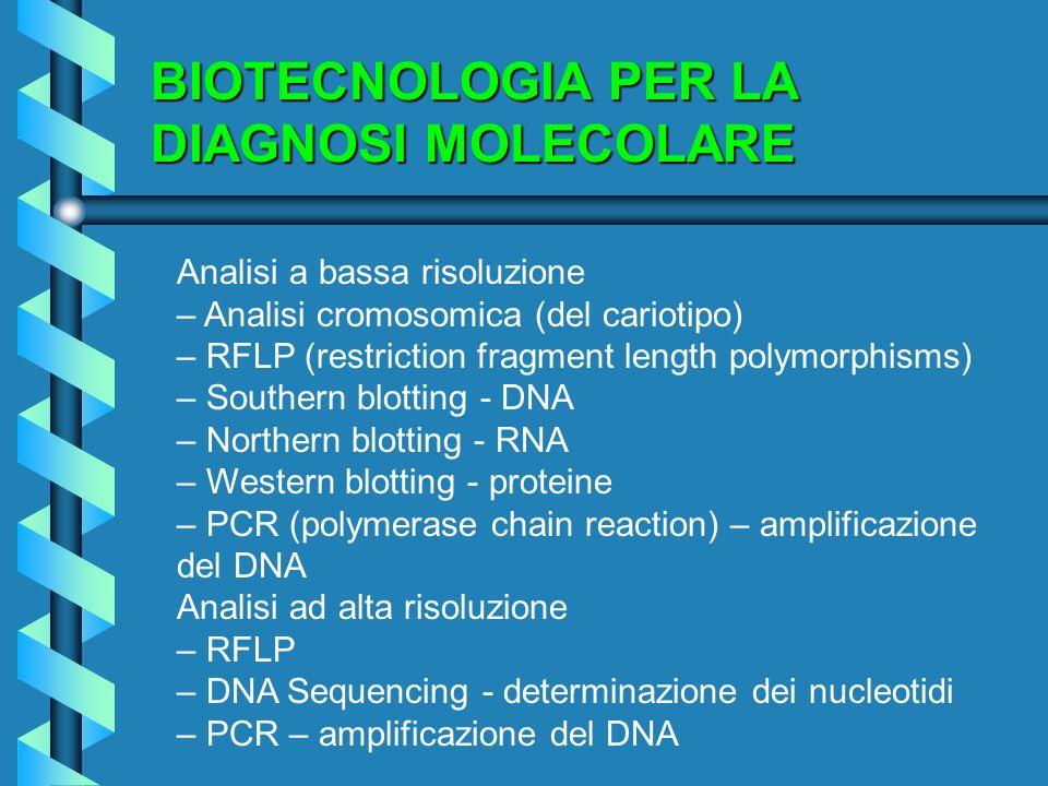 BIOTECNOLOGIA PER LA DIAGNOSI MOLECOLARE