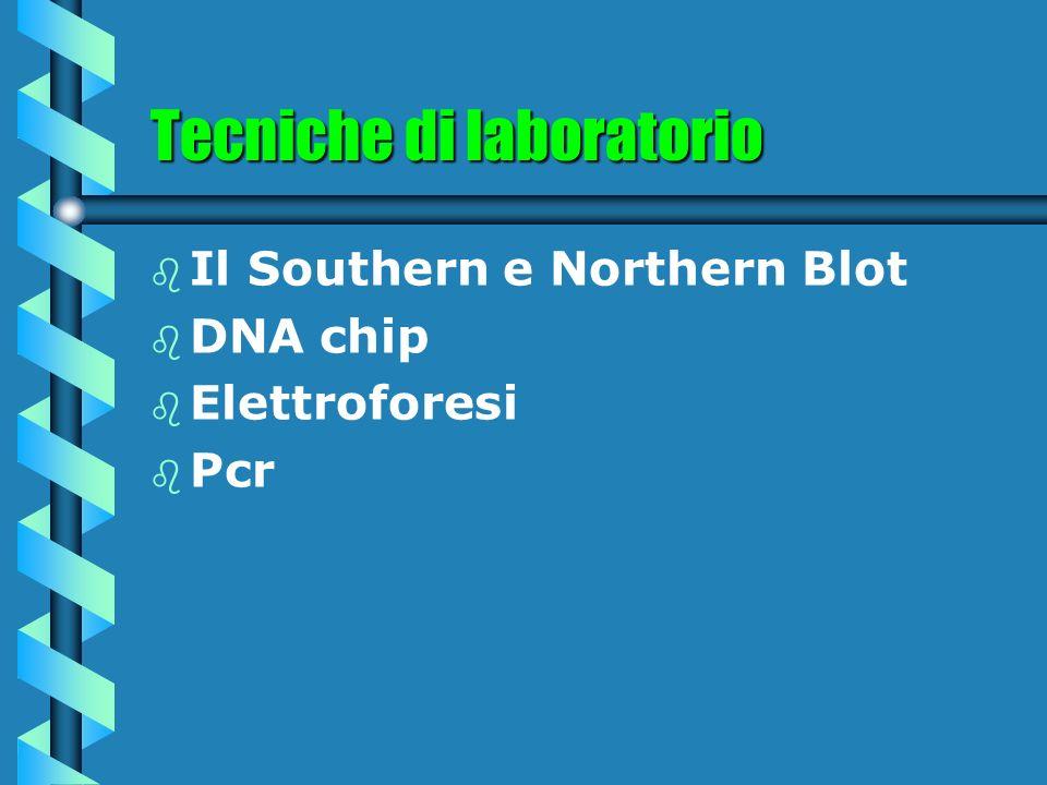 Tecniche di laboratorio