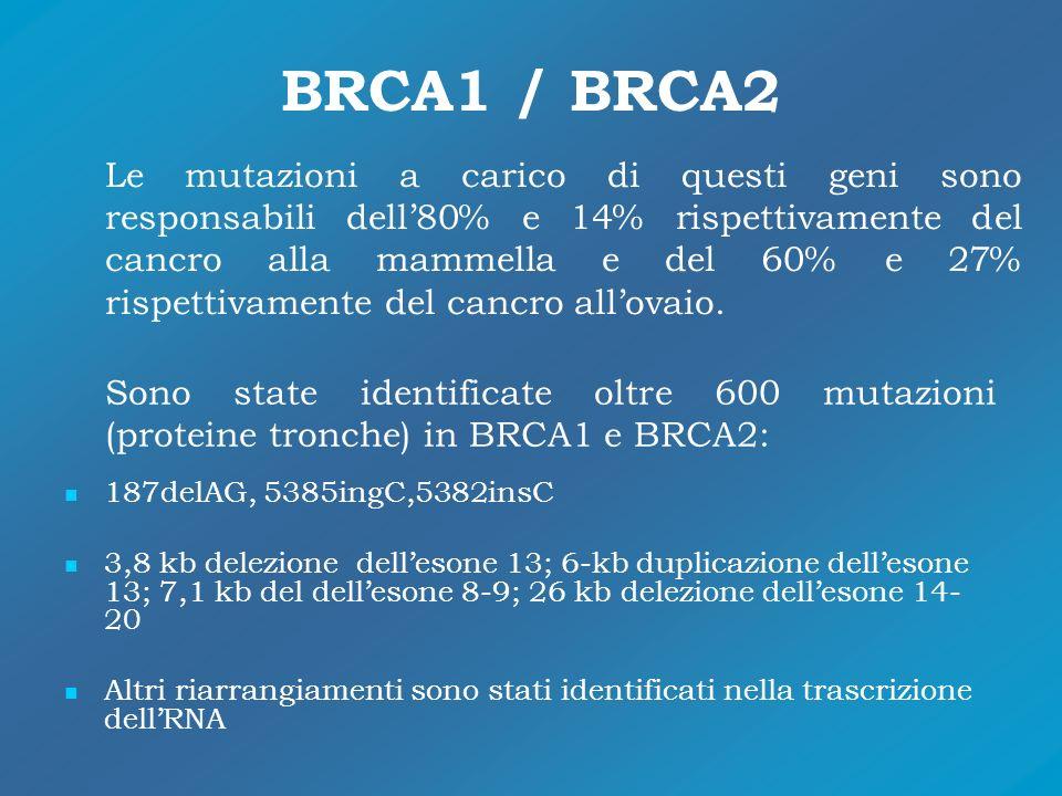 BRCA1 / BRCA2
