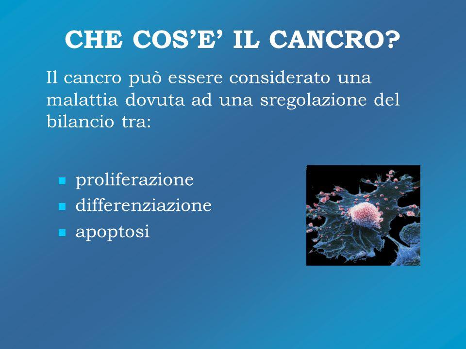 CHE COS'E' IL CANCRO Il cancro può essere considerato una malattia dovuta ad una sregolazione del bilancio tra: