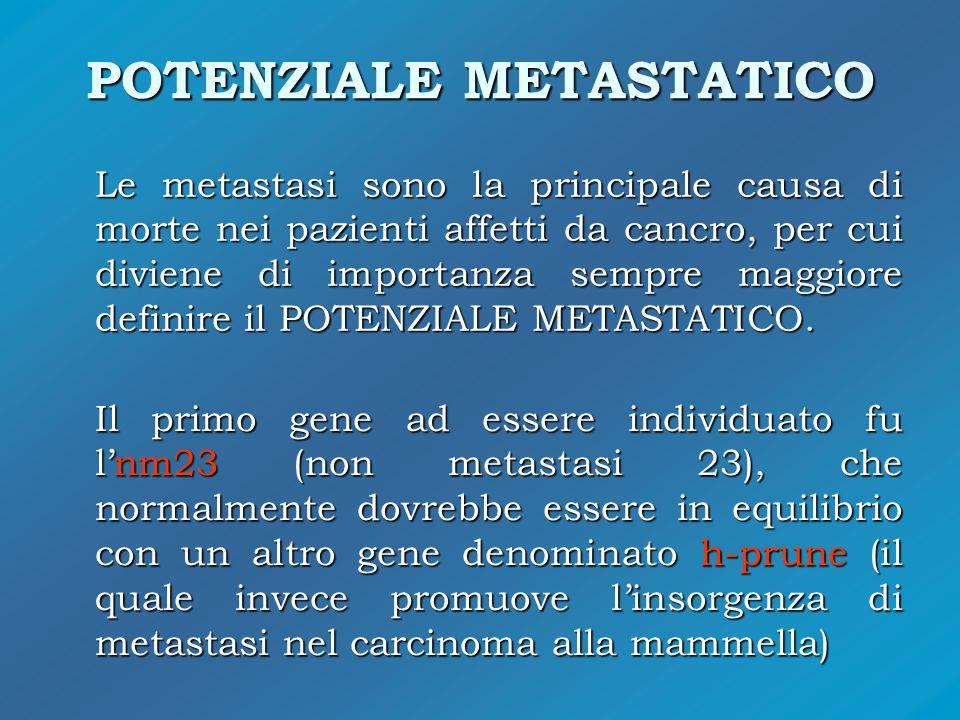 POTENZIALE METASTATICO