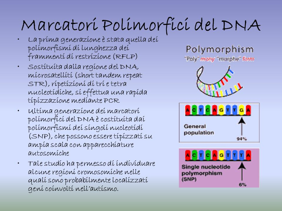 Marcatori Polimorfici del DNA