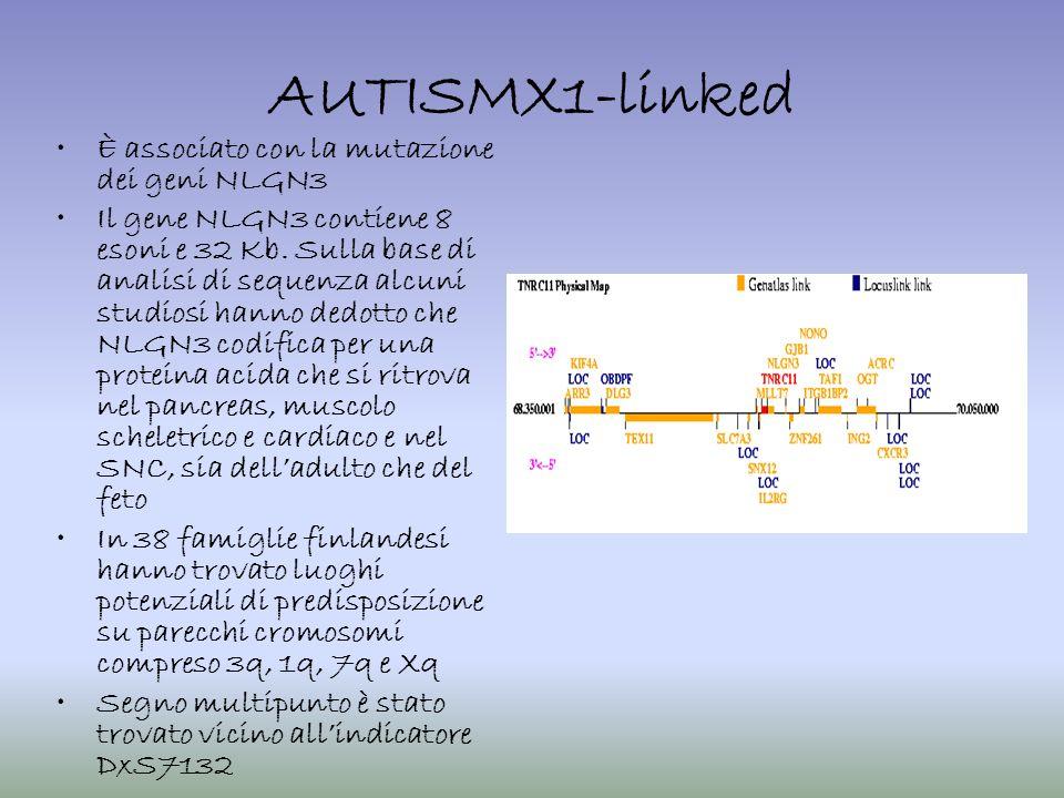 AUTISMX1-linked È associato con la mutazione dei geni NLGN3