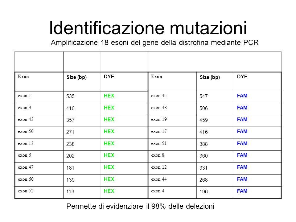 Identificazione mutazioni