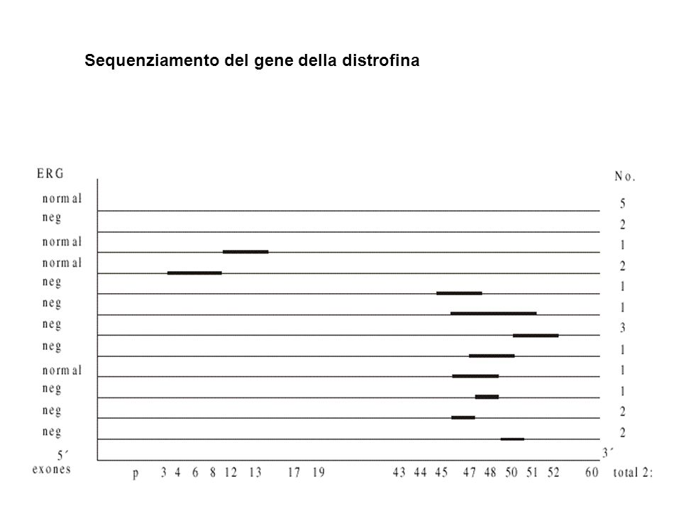 Sequenziamento del gene della distrofina