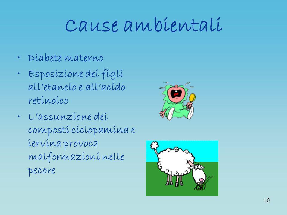 Cause ambientali Diabete materno