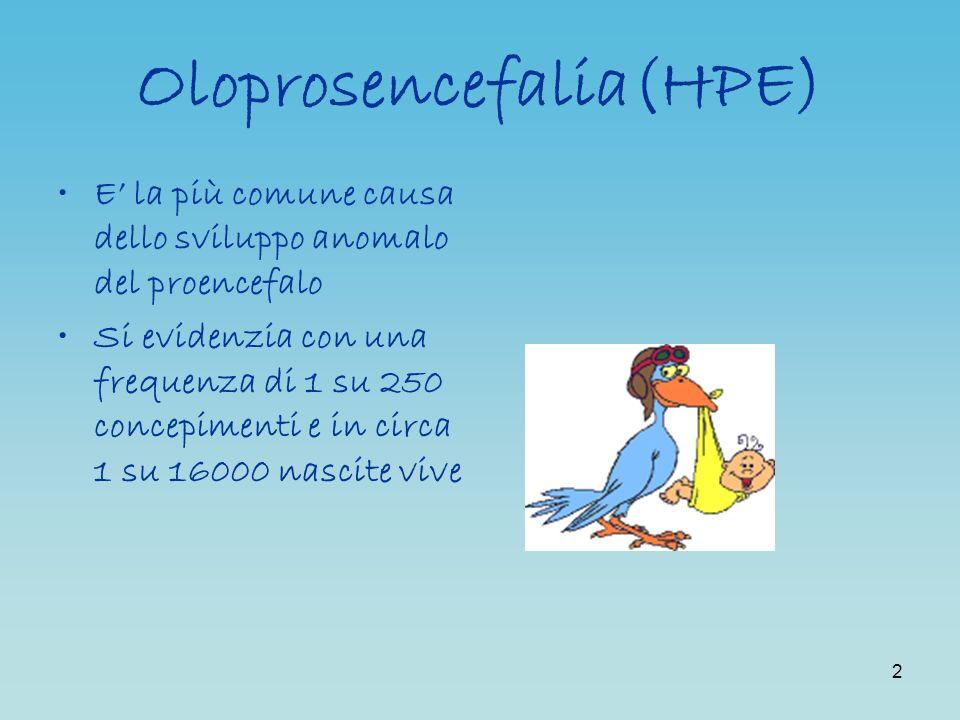 Oloprosencefalia(HPE)