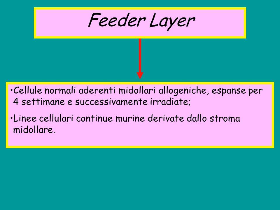 Feeder Layer Cellule normali aderenti midollari allogeniche, espanse per 4 settimane e successivamente irradiate;