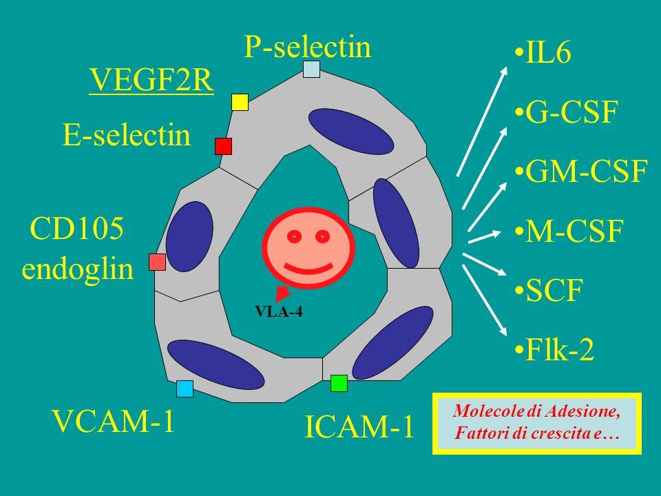 Molecole di Adesione, Fattori di crescita e…