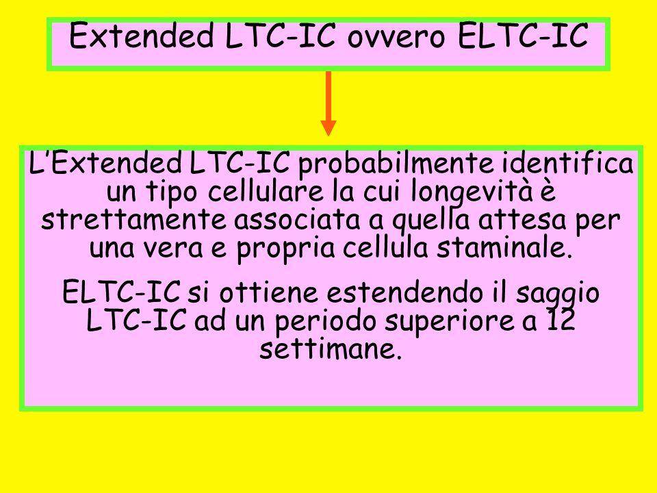 Extended LTC-IC ovvero ELTC-IC