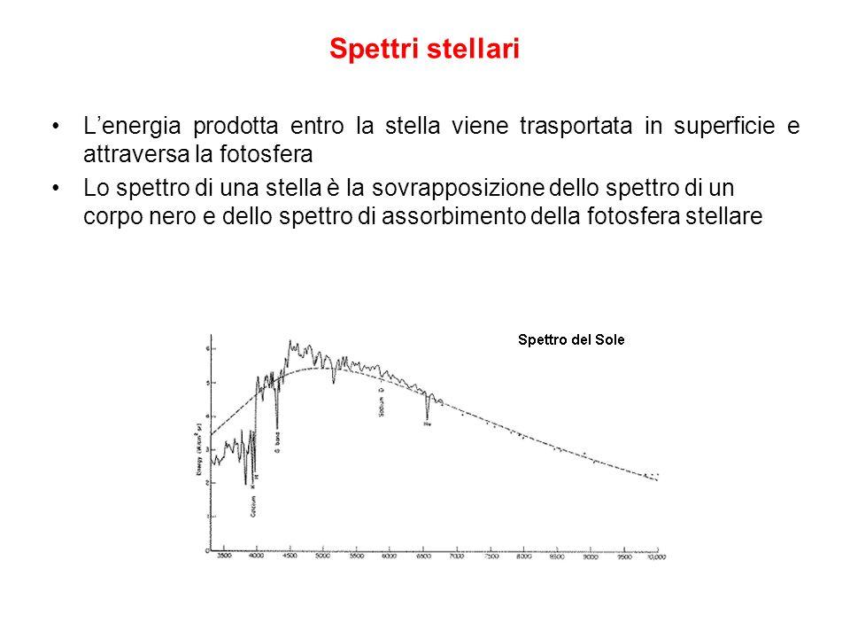 Spettri stellari L'energia prodotta entro la stella viene trasportata in superficie e attraversa la fotosfera.