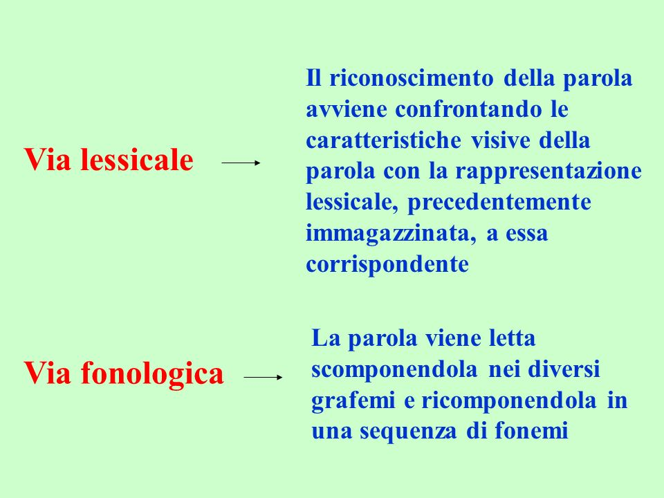 Via lessicale Via fonologica