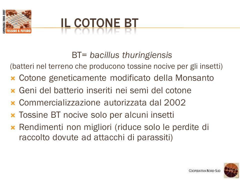 BT= bacillus thuringiensis