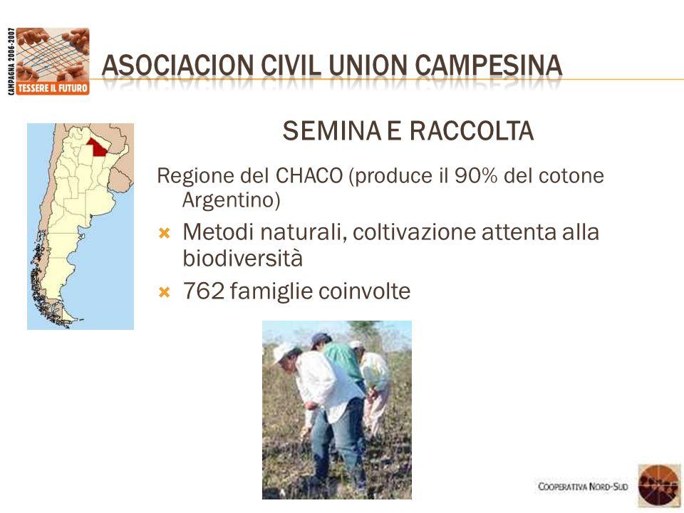 SEMINA E RACCOLTA Regione del CHACO (produce il 90% del cotone Argentino) Metodi naturali, coltivazione attenta alla biodiversità.