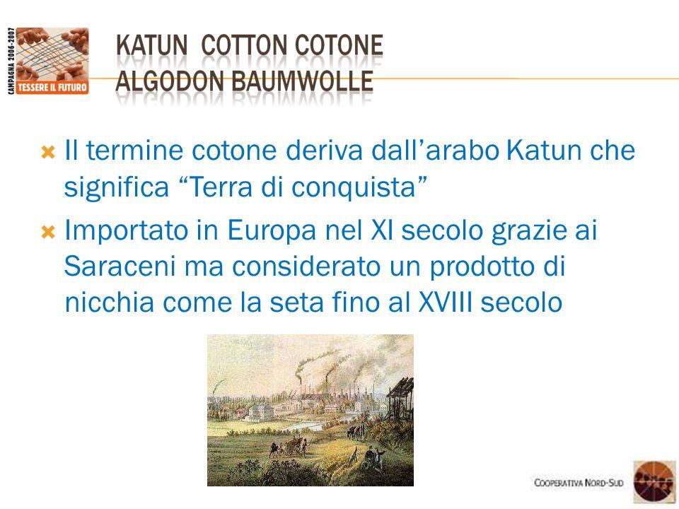Il termine cotone deriva dall'arabo Katun che significa Terra di conquista