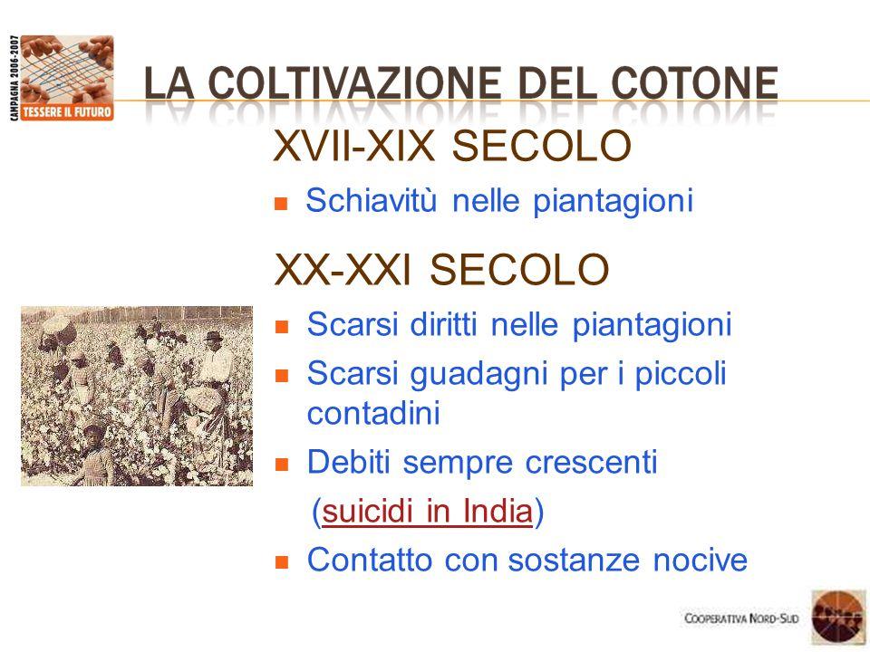 XVII-XIX SECOLO XX-XXI SECOLO Schiavitù nelle piantagioni