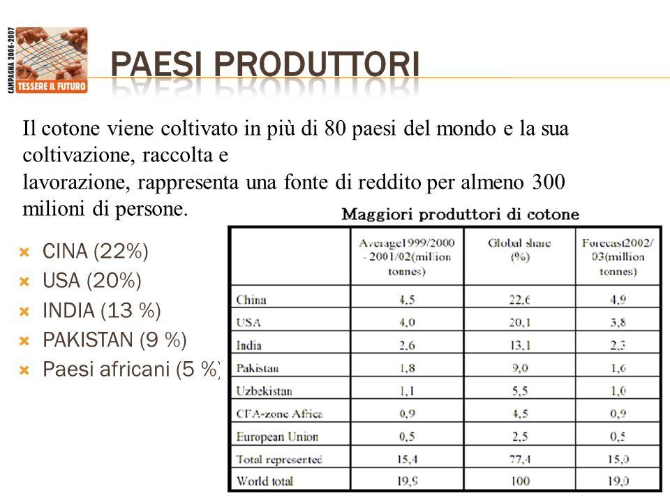 Il cotone viene coltivato in più di 80 paesi del mondo e la sua coltivazione, raccolta e