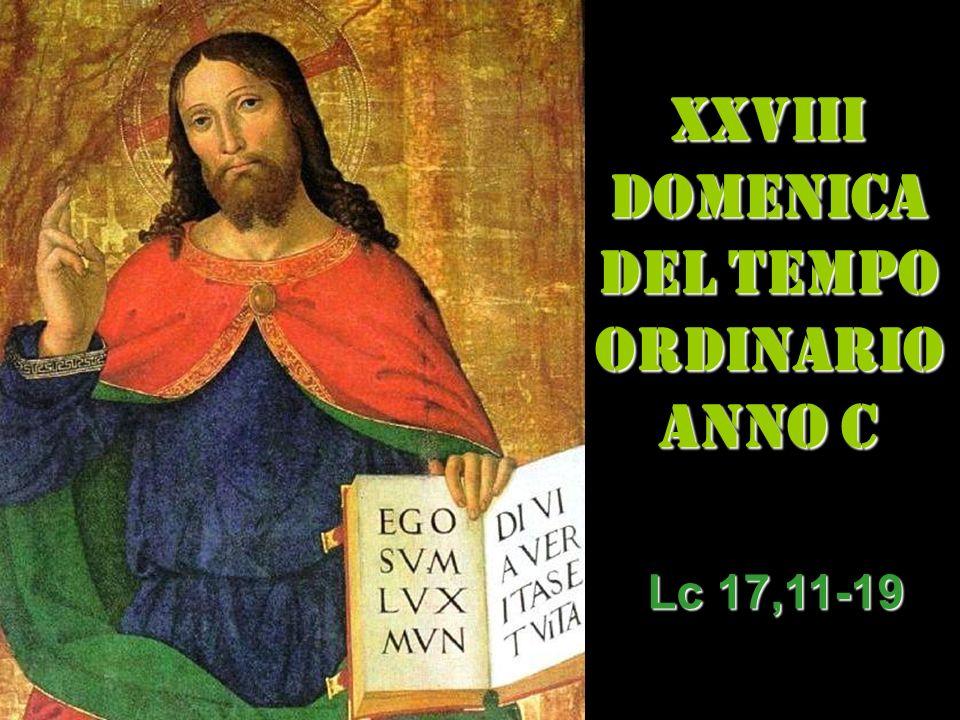 XXVIII DOMENICA DEL TEMPO ORDINARIO ANNO C