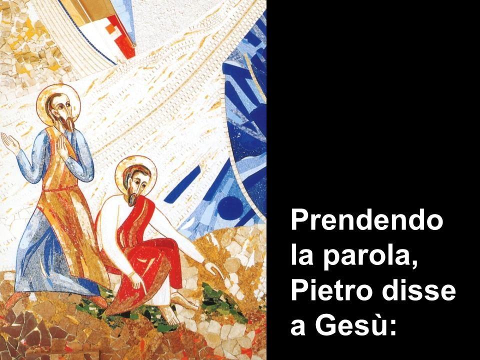 Prendendo la parola, Pietro disse a Gesù:
