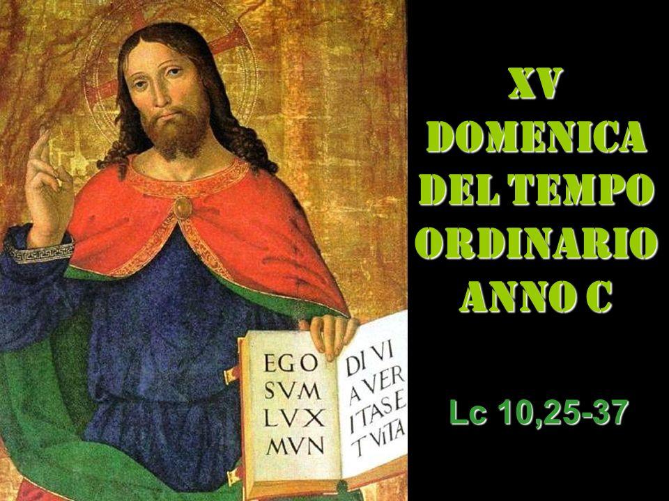 XV DOMENICA DEL TEMPO ORDINARIO ANNO C