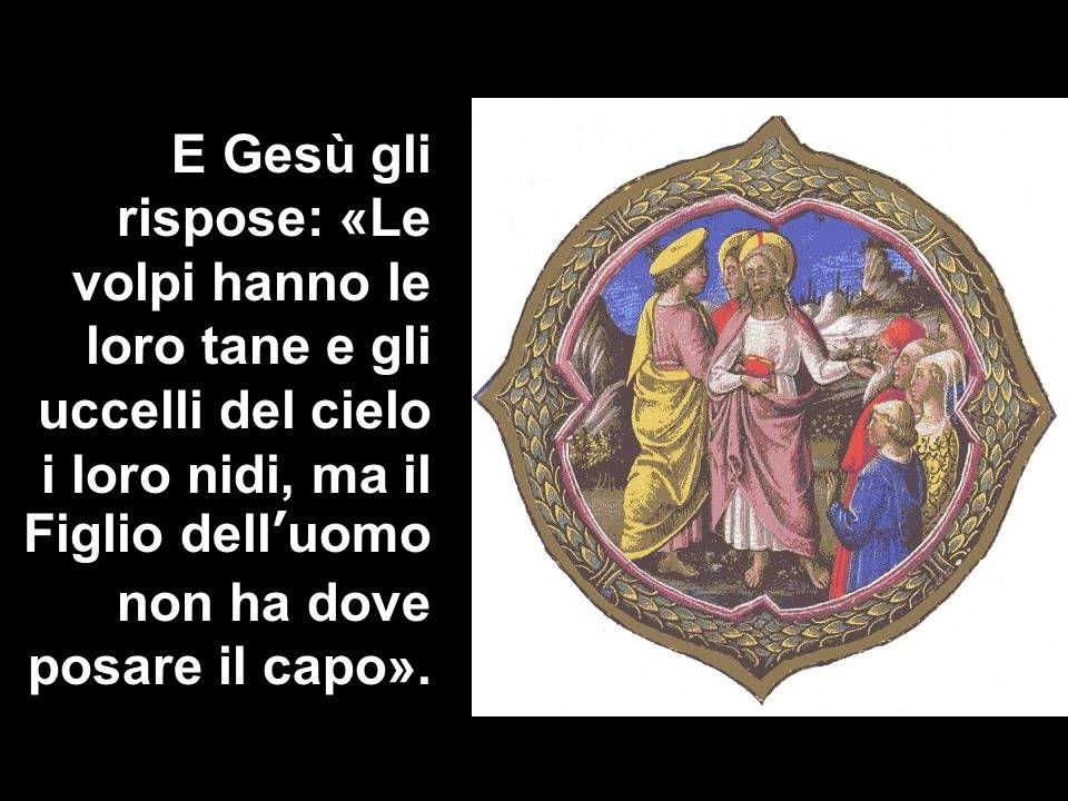 E Gesù gli rispose: «Le volpi hanno le loro tane e gli uccelli del cielo i loro nidi, ma il Figlio dell'uomo non ha dove posare il capo».