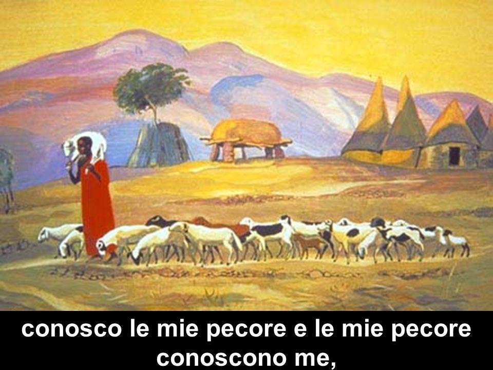 conosco le mie pecore e le mie pecore conoscono me,