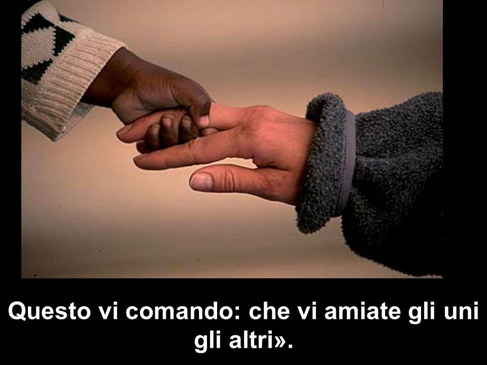 Questo vi comando: che vi amiate gli uni gli altri».