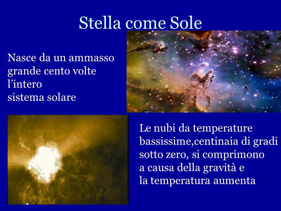 Stella come Sole Nasce da un ammasso grande cento volte l'intero