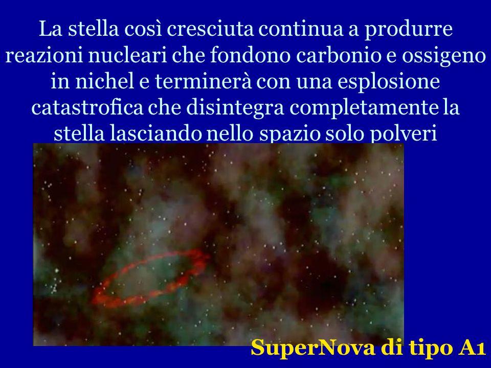 La stella così cresciuta continua a produrre reazioni nucleari che fondono carbonio e ossigeno in nichel e terminerà con una esplosione catastrofica che disintegra completamente la stella lasciando nello spazio solo polveri
