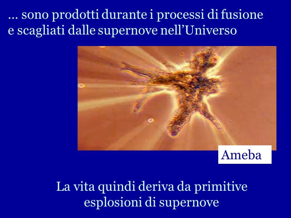 … sono prodotti durante i processi di fusione