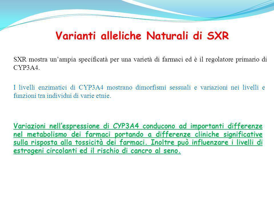 Varianti alleliche Naturali di SXR