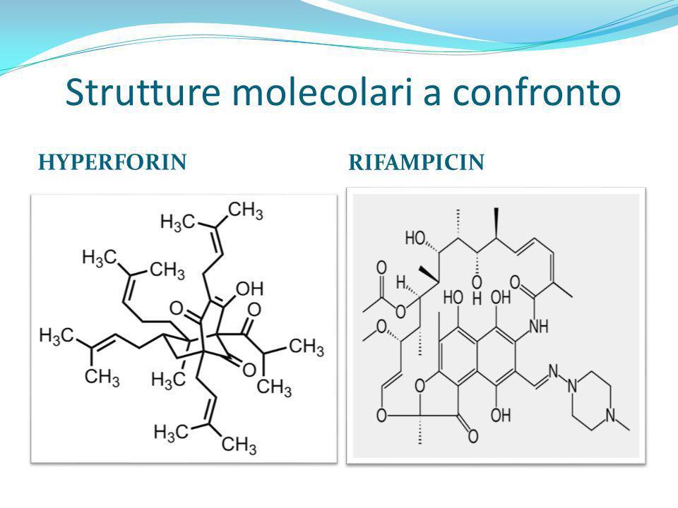Strutture molecolari a confronto