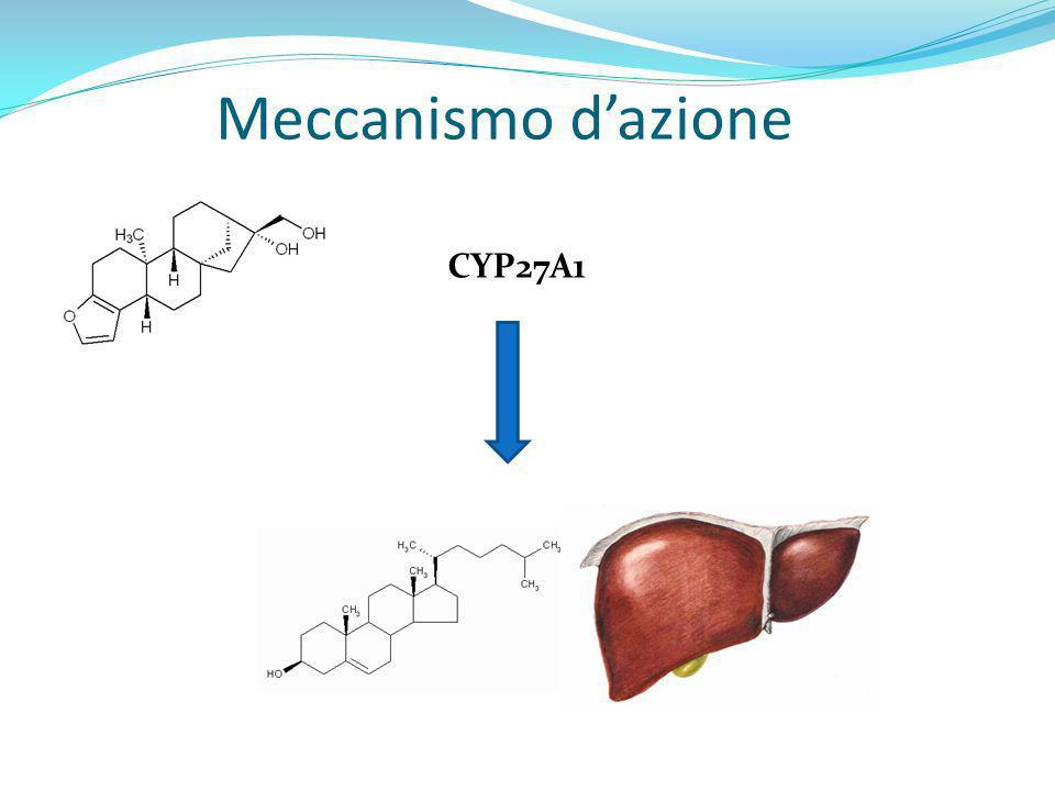 Meccanismo d'azione CYP27A1