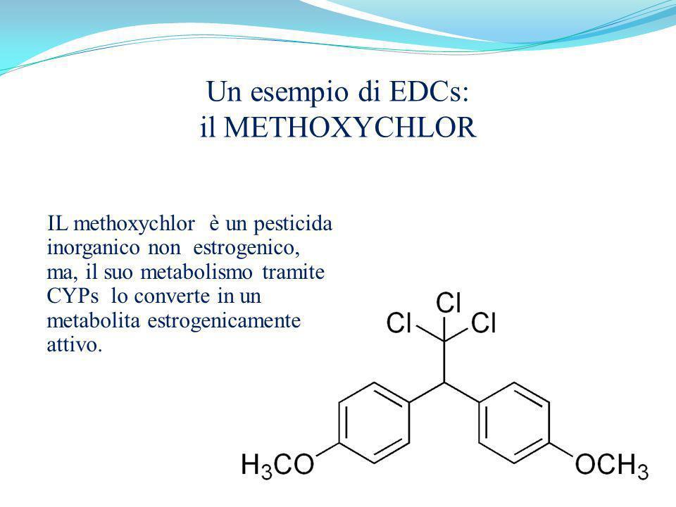 Un esempio di EDCs: il METHOXYCHLOR