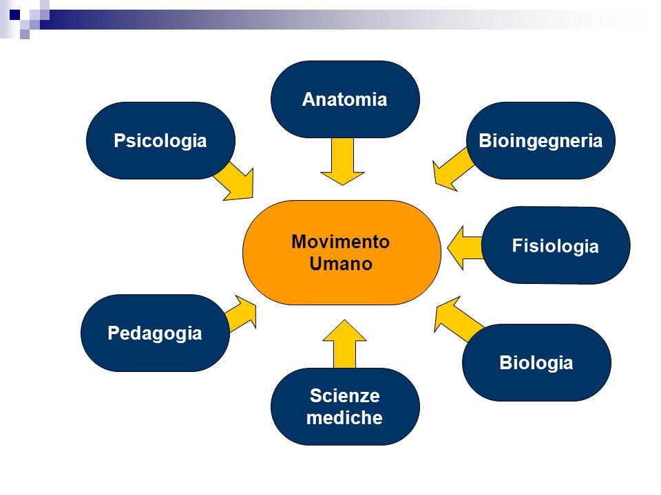 Anatomia Psicologia Bioingegneria Movimento Umano Fisiologia Pedagogia Biologia Scienze mediche