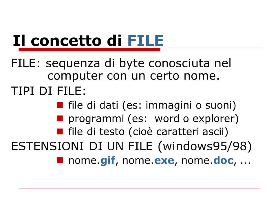 Il concetto di FILEFILE: sequenza di byte conosciuta nel computer con un certo nome. TIPI DI FILE: file di dati (es: immagini o suoni)