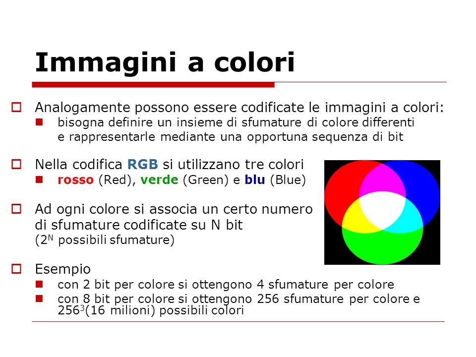 Immagini a coloriAnalogamente possono essere codificate le immagini a colori: bisogna definire un insieme di sfumature di colore differenti.