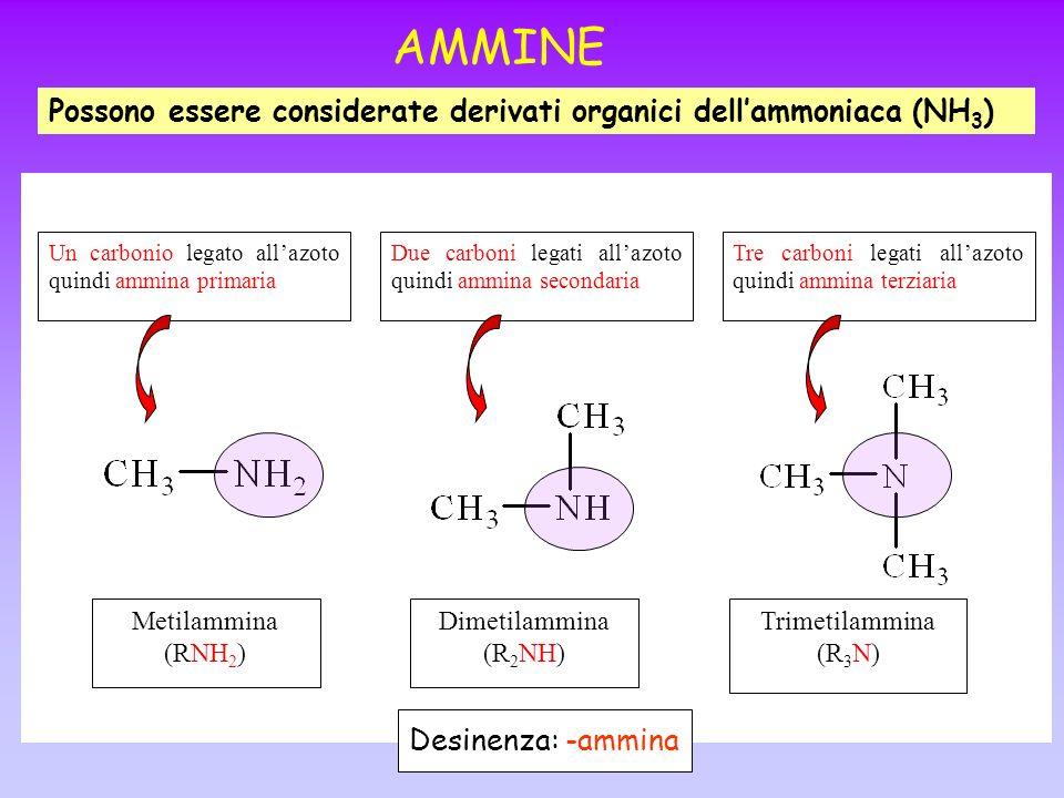 AMMINE Possono essere considerate derivati organici dell'ammoniaca (NH3) Un carbonio legato all'azoto quindi ammina primaria.