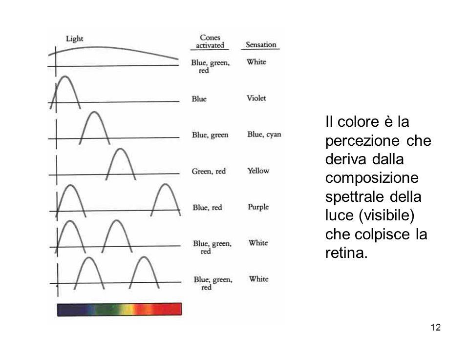 Il colore è la percezione che deriva dalla composizione spettrale della luce (visibile) che colpisce la retina.
